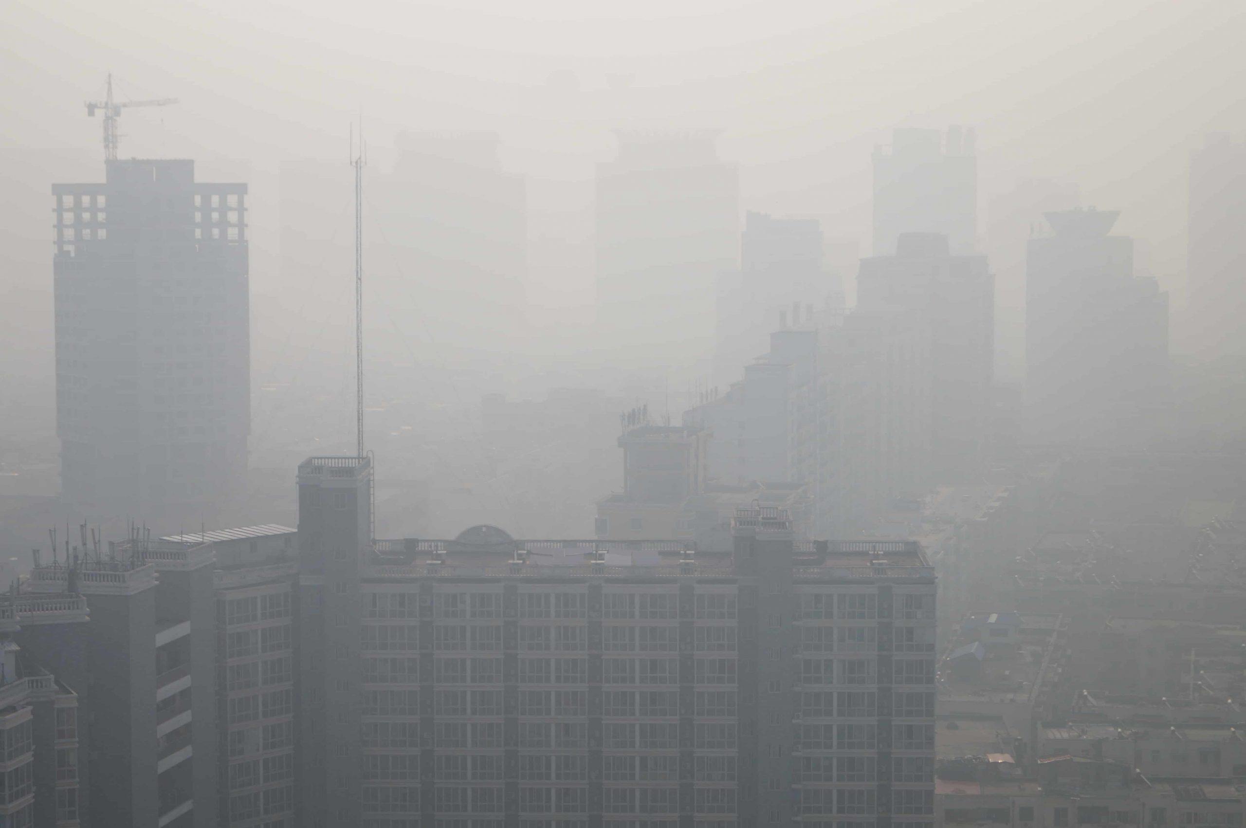 Luftqualität: Die ideale Luft in den eigenen vier Wänden