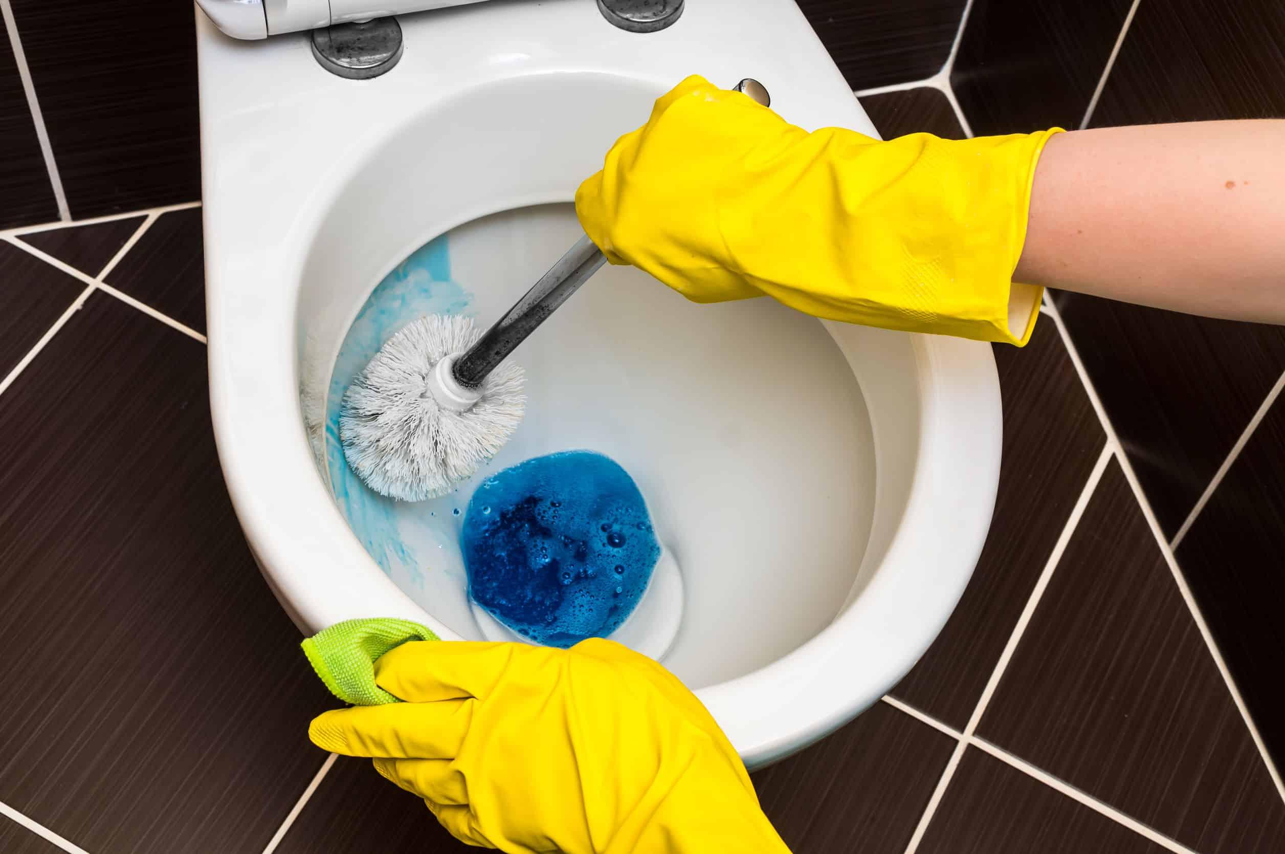 Urinstein entfernen: Tipps und Tricks um Urinstein effektiv zu lösen